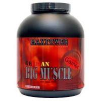 Big Muscle (2,5кг)