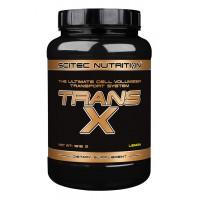 Trans X (908г)