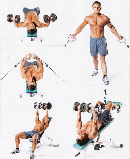 Лучший упражнение для грудной мышцы домашних условиях 88